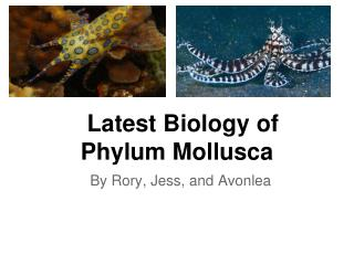 Latest Biology of Phylum Mollusca