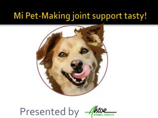 Mi Pet-Making joint support tasty!