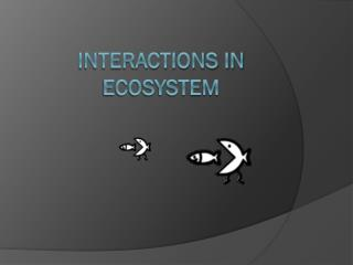 Interactions in ecosystem