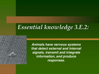 Essential  knowledge 3.E.2: