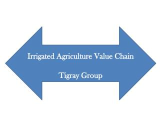 Irrigated Agriculture Value Chain  Tigray Group