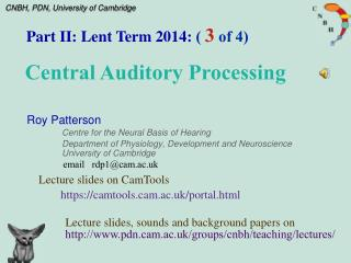 Roy Patterson Centre for the Neural Basis of Hearing