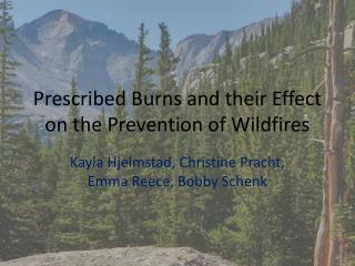 Prescribed Burns and their Effect on the Prevention of Wildfires