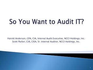So You Want to Audit IT?