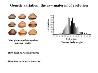 Genetic variation: the raw material of evolution