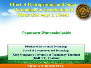 Effect of  Hydropriming  and Sugar Metabolism  on  Germination  of Maize ( Zea mays  L.) Seeds