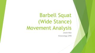 Barbell Squat (Wide Stance) Movement Analysis