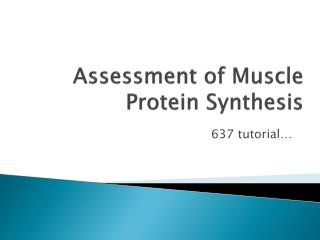 Assessment of Muscle Protein Synthesis