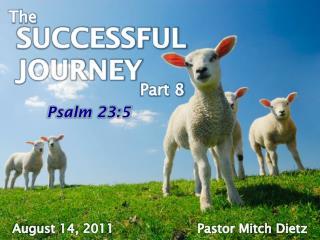 SUCCESSFUL JOURNEY Part 8