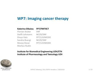 WP7: Imaging cancer therapy