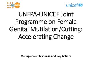 UNFPA-UNICEF Joint Programme on Female Genital Mutilation/Cutting: Accelerating Change