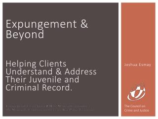 Expungement & Beyond Helping Clients Understand & Address  T heir Juvenile and Criminal Record.