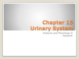 Chapter 15 Urinary System