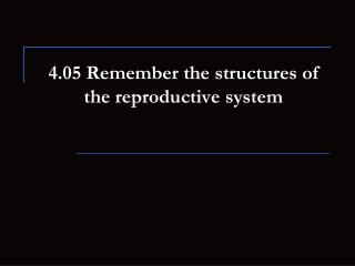 4.05 Remember the structures of the reproductive system
