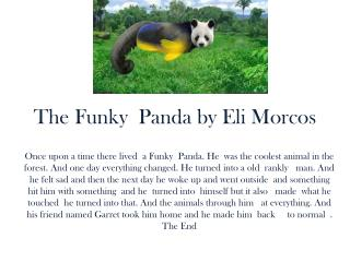 The Funky  Panda by Eli  Morcos