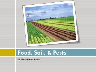 Food, Soil, & Pests