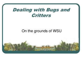 Dealing with Bugs and Critters