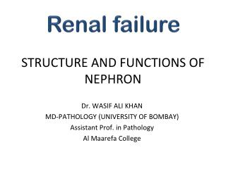 STRUCTURE AND FUNCTIONS OF NEPHRON