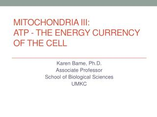 Mitochondria III: ATP - the energy Currency of the Cell