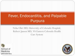 Fever, Endocarditis, and Palpable  Purpura