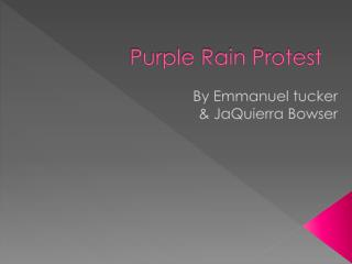 Purple Rain Protest