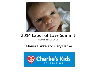 2014 Labor of Love Summit November 13, 2014