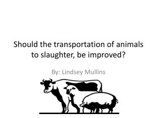 Should the transportation of animals to slaughter, be improved?