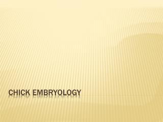 Chick Embryology