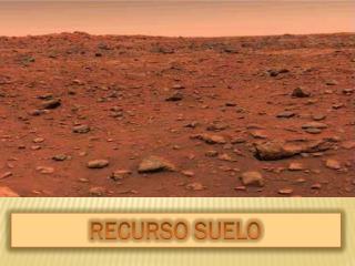 RECURSO SUELO