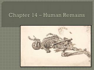 Chapter 14 – Human Remains
