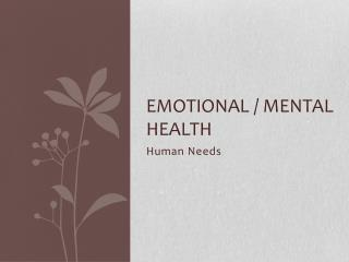 Emotional / Mental Health