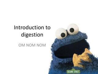 Introduction to digestion