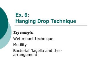 Ex. 6 :  Hanging Drop Technique
