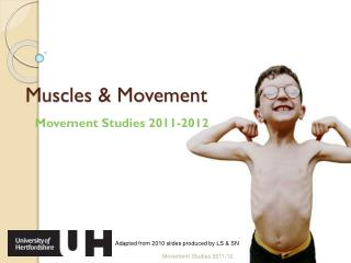 Muscles & Movement