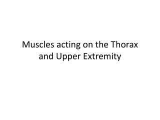 Muscles acting on the Thorax and Upper Extremity