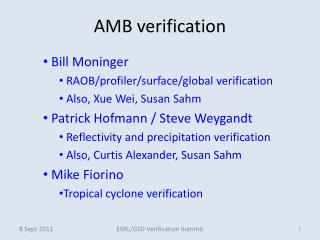 AMB verification