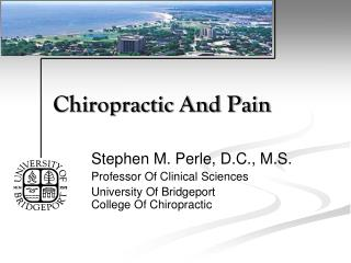 Chiropractic And Pain