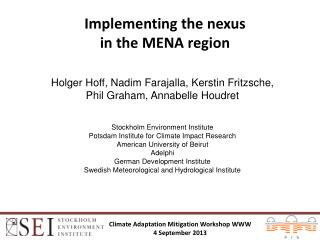 Implementing the nexus  in the MENA region