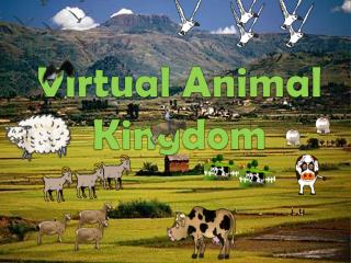 Virtual Animal Kingdom