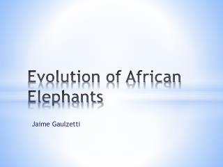 Evolution of African Elephants