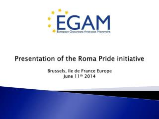 Presentation of the Roma Pride initiative Brussels, Ile de France Europe  June 11 th  2014