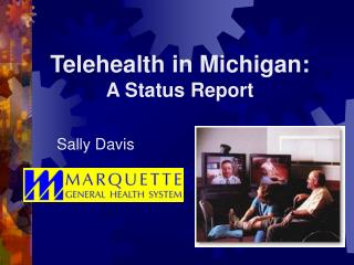 Telehealth in Michigan:   A Status Report