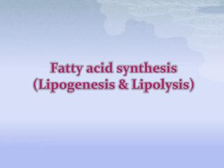 Fatty acid synthesis ( Lipogenesis  & Lipolysis )