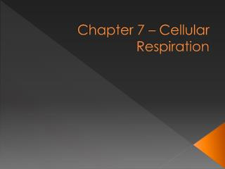 Chapter 7 – Cellular Respiration