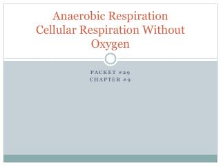 Anaerobic Respiration Cellular Respiration Without Oxygen