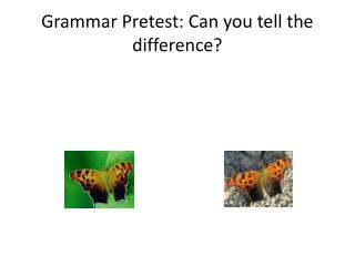 Grammar Pretest: Can you tell the difference?
