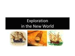 Exploration in the  New World