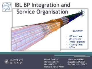 IBL BP Integration and Service Organisation