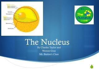 The Nucleus