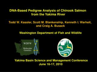 DNA-Based  Pedigree  Analysis  of Chinook Salmon  from the  Yakima  River